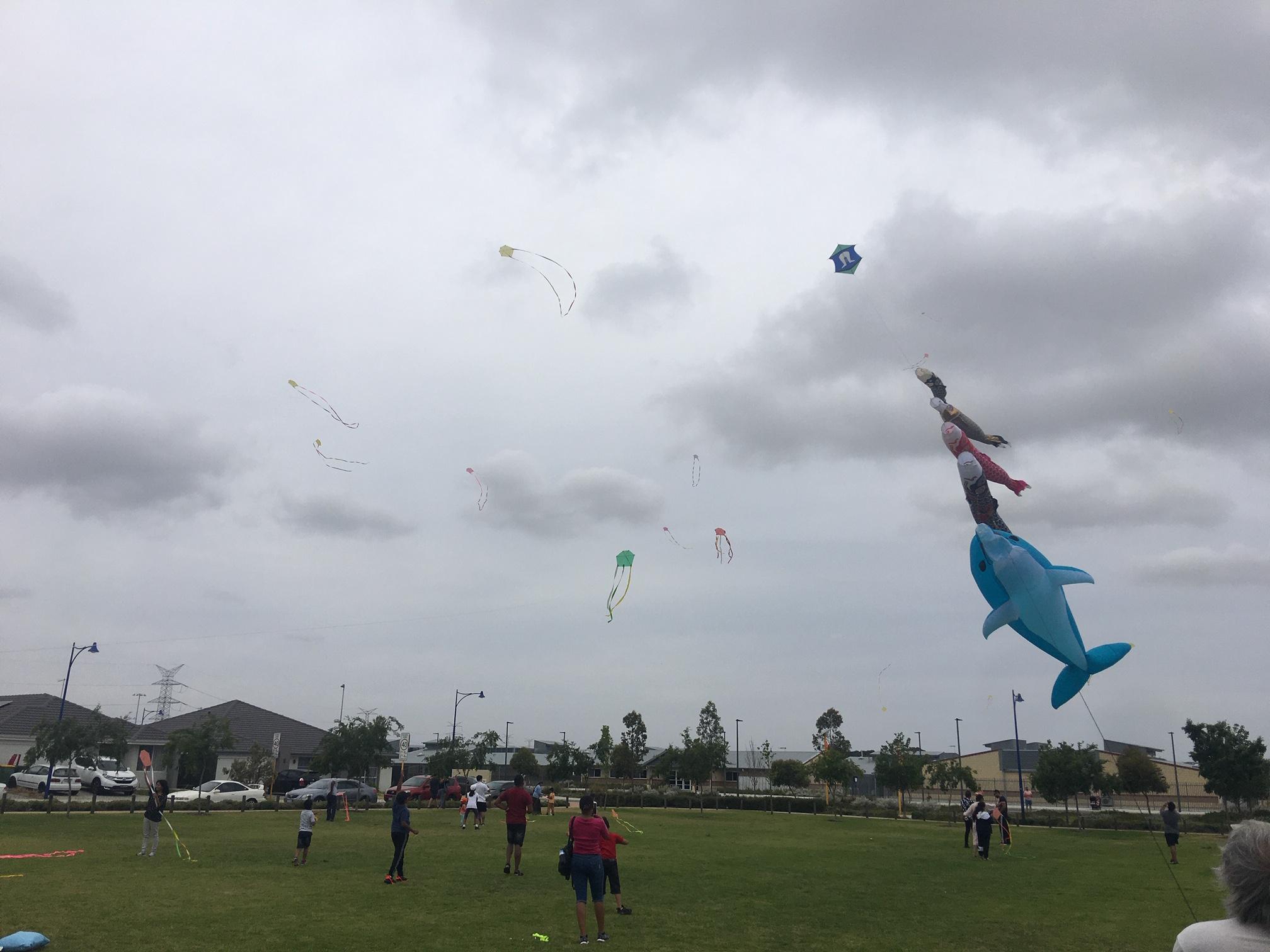 kite-flying-large-kites